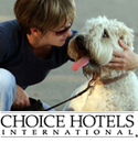 Some Hotels Just Allow Pets But Choice Welcomes Them They Understand That Your Are A Part Of The Family And Should Not Be Left Behind When