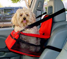 Pet Safety Restraint