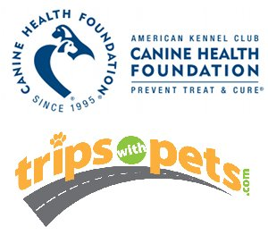 Pet Travel Safety Campaign