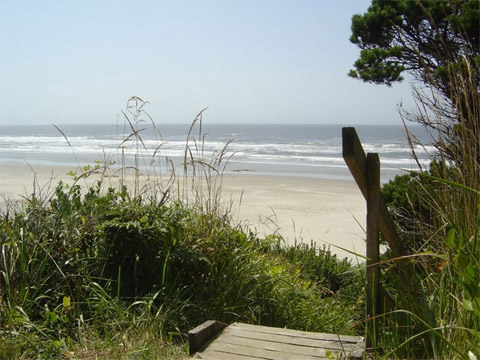 Dog Friendly Ocean Odyssey Vacation Rentals