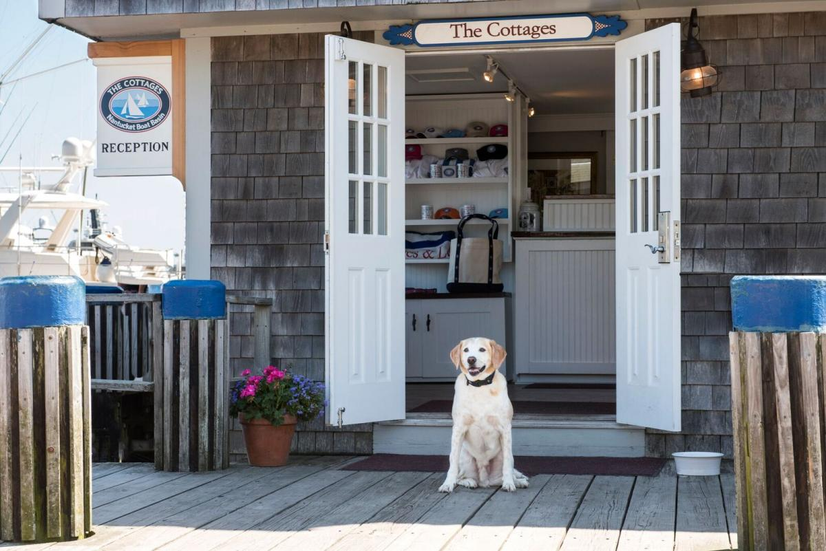 Tucker Talks With The Cottages at Nantucket Boat Basin