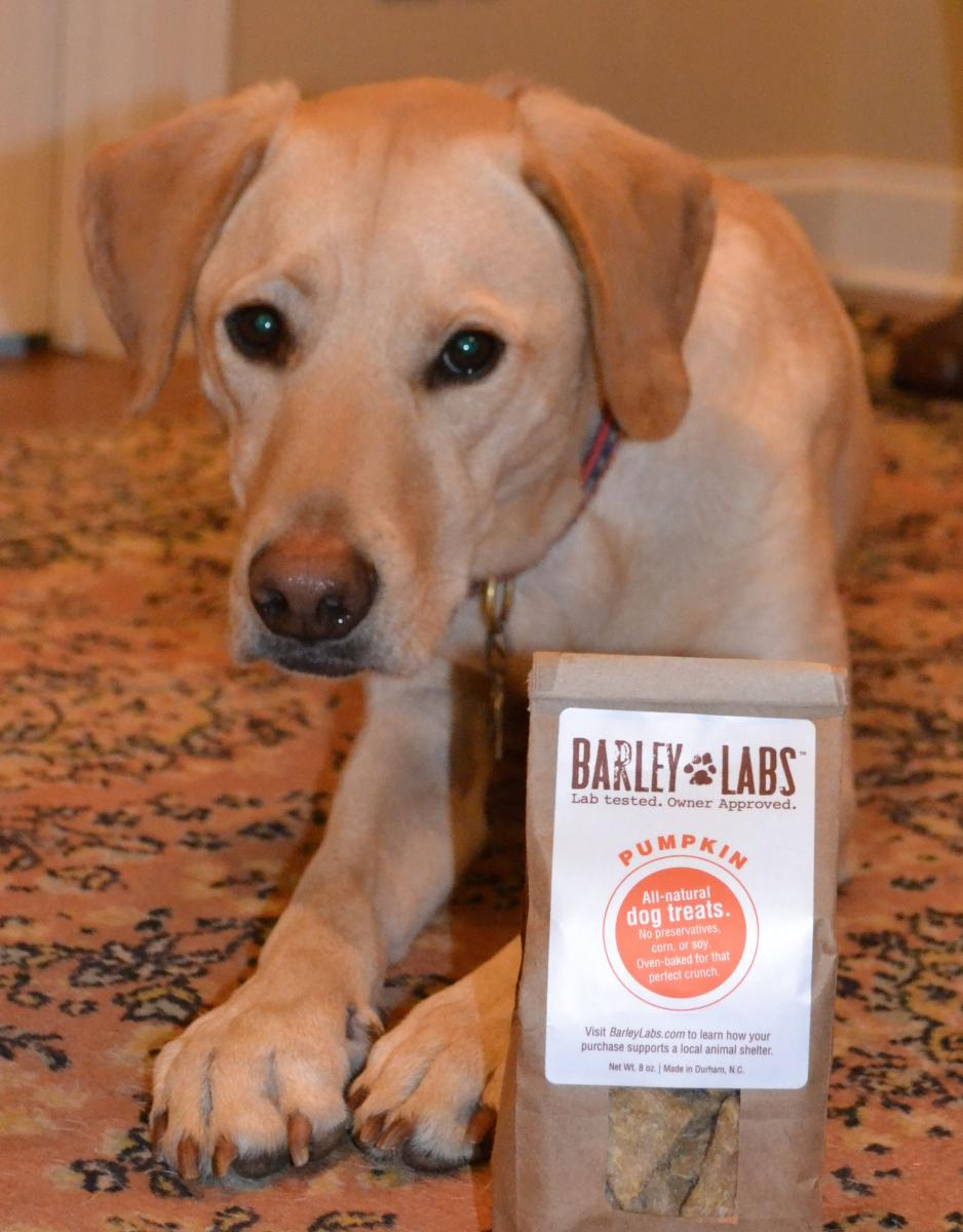 Talkin' with Tucker - Barley Labs